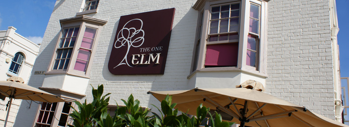 The One Elm Pub/Bistro